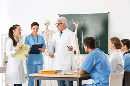 Medical students and professor studying human spine structure in classroom Standard-Bild