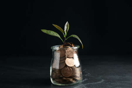 Glass jar with coins and green plant on black table 版權商用圖片