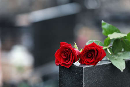 Red roses on black granite tombstone outdoors, space for text. Funeral ceremony 스톡 콘텐츠