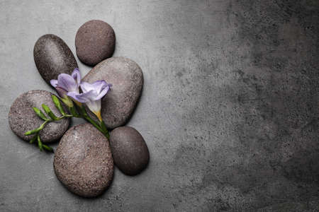 Spa stones and freesia flowers on grey table, flat lay. Space for text