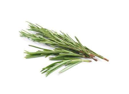 Frischer grüner Rosmarin getrennt auf Weiß. Aromatisches Kraut
