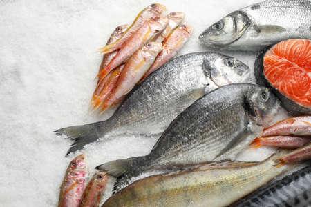 Frischer Fisch und Meeresfrüchte auf Eis, flach