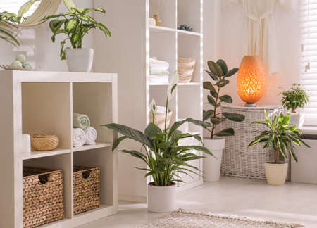 Elegant interior of modern bathroom with green plants Stock Photo