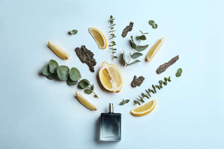 Beautiful composition with bottle of perfume, lemon, tree bark and eucalyptus on white background, flat lay Foto de archivo