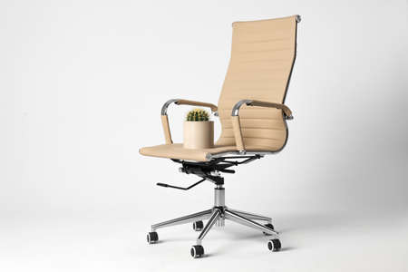 Office chair with cactus isolated on white. Hemorrhoids concept