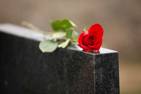 Rote Rose auf schwarzem Granitgrabstein im Freien. Begräbniszeremonie