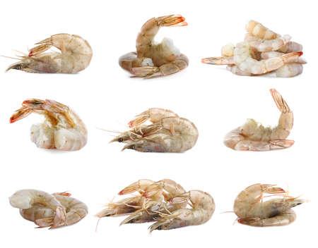 Set of fresh raw shrimps on white background