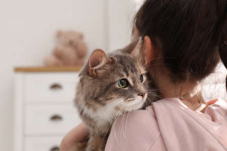 Little girl with cute cat at home. First pet