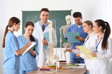 Medical students studying human spine structure in classroom