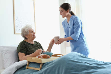 Care worker serving dinner for elderly woman in geriatric hospice Stock Photo