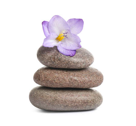 Spa stones and freesia flower isolated on white