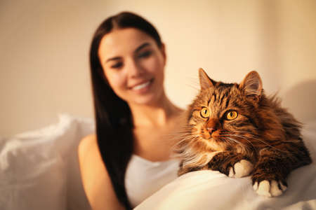 Beautiful young woman with her cute cat on bed, focus on pet