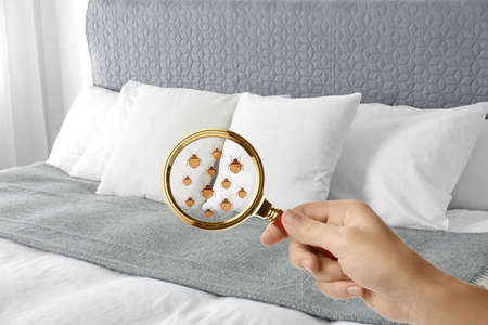 Woman with magnifying glass detecting bed bugs on bed, closeup