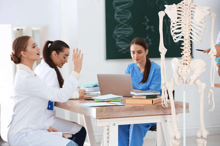 Medical students studying human skeleton anatomy in classroom