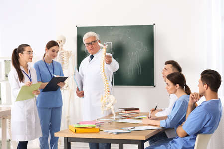 Medical students and professor studying human spine structure in classroom Stock Photo