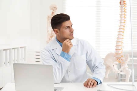 Male orthopedist with laptop near human spine model in office Stockfoto