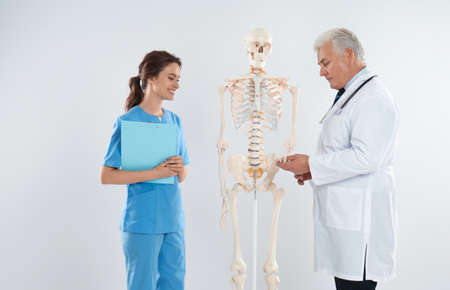 Professional orthopedist with human skeleton model teaching medical student against light background