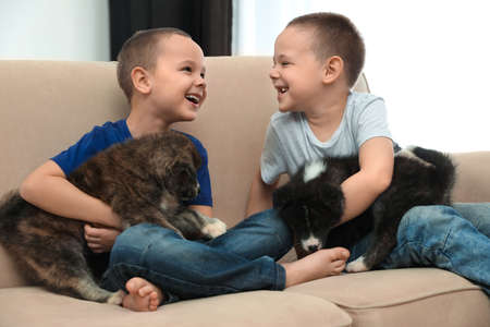 Little boys with Akita inu puppies on sofa at home. Friendly dogs Archivio Fotografico - 140894558