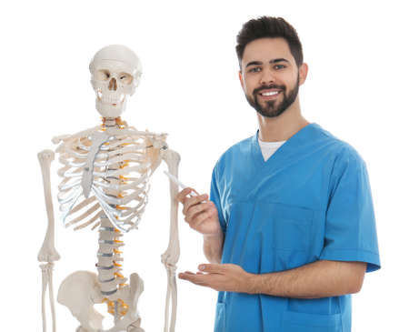 Male orthopedist with human skeleton model on white background