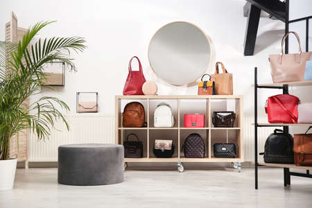 Collection of stylish woman's bags in modern store Zdjęcie Seryjne