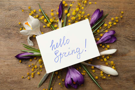 Card with words HELLO SPRING and fresh flowers on wooden table, flat lay