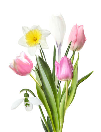 Bouquet of beautiful spring flowers on white background