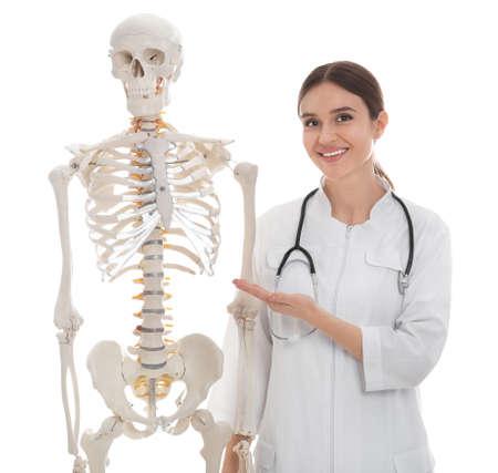 Female orthopedist with human skeleton model on white background