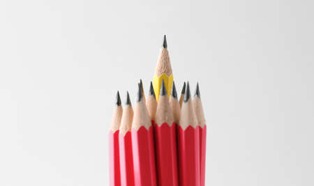 Red pencils and different one on white background
