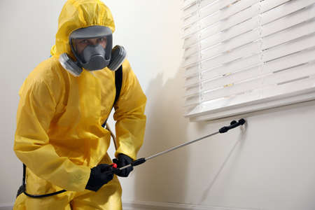 Pest control worker in protective suit spraying insecticide on window sill indoors Banque d'images