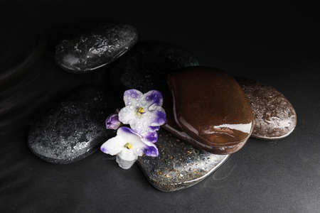 Stones and flowers in water on grey background. Zen lifestyle