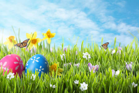 Bright Easter eggs in green grass and butterflies against blue sky