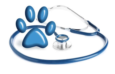 Stethoscope and animal paw on white background