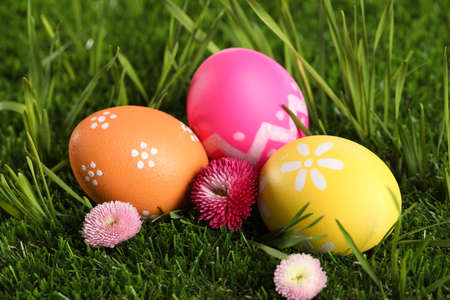 Colorful Easter eggs and daisy flowers in green grass, closeup Фото со стока