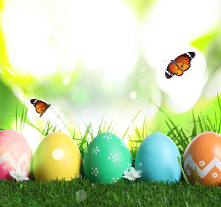 Colorful Easter eggs and butterflies on blurred green background