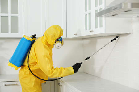 Pest control worker in protective suit spraying insecticide on furniture indoors Banque d'images