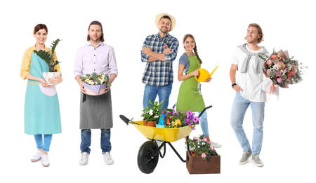 Collage of florists with plants on white background