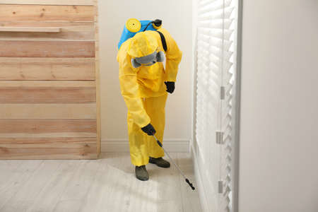 Pest control worker in protective suit spraying insecticide on floor at home Banque d'images
