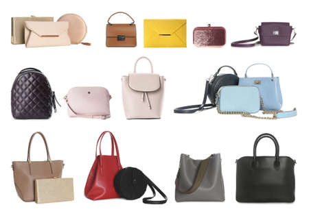Set of different woman's bags on white background