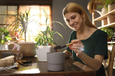 Young woman taking care of plants at home. Engaging hobby