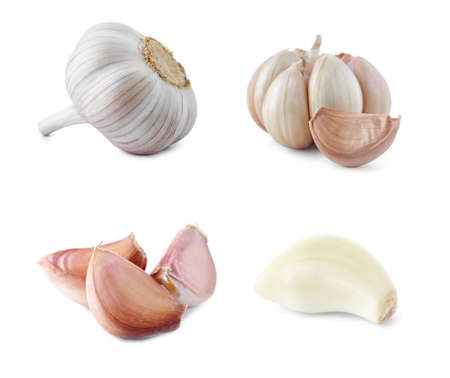 Set of fresh garlic on white background