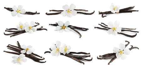 Set with aromatic vanilla pods and flowers on white background