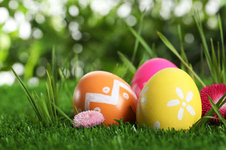 Colorful Easter eggs and daisy flower in green grass, closeup Banque d'images