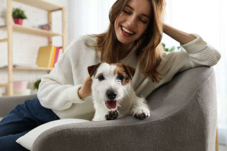 Young woman with her cute Jack Russell Terrier on sofa at home. Lovely pet Imagens
