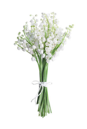 Beautiful lily of the valley flowers isolated on white