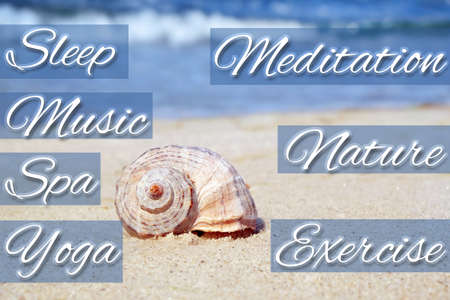 Stress management techniques and shell near sea on background