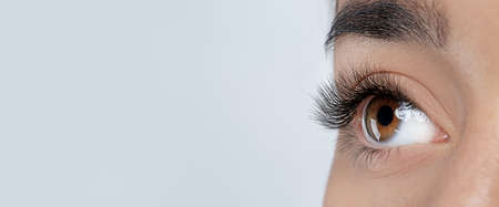 Closeup view of young woman with beautiful long eyelashes on grey background, space for text. Banner design