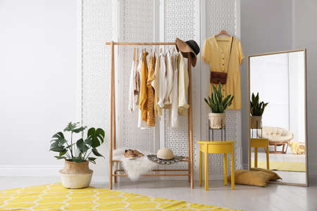 Rack with stylish women's clothes and mirror indoors. Interior design