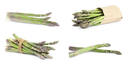 Set of fresh raw asparagus on white background Foto de archivo