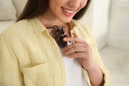 Woman with striped knee tarantula at home, closeup. Exotic pet