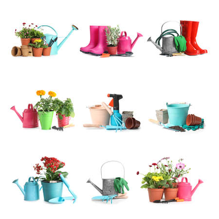 Set with different gardening tools and plants on white background